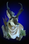 Pronghorn Wall Pedestal Mount with Accents