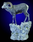 Stone Sheep Lifesize Mount on Floor Mounted Rock Base