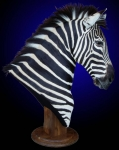 Zebra, Tabletop Pedestal Mount