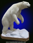 Polar Bear full mount on snow / ice scene, polar bear lifesize mount, polar bear full mount