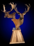 Red Stag & Fallow Pedestal Mount