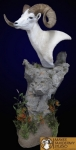 dall-sheep-snider-325x640-254x500