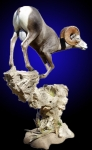 Desert Bighorn Sheep Lifesize Mount on Floor Mounted Rock Base